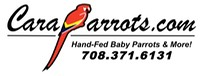 CaraParrots Updated Logo 2012 cropped